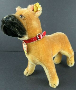"""Vintage Steiff Boxer Dog W/button & Paper Tag & Collar Approx.  10 """" Long"""
