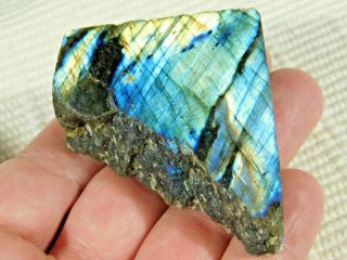 A Bright Blue And Gold Flash On This Cut And Polished Labradorite 98.  7gr