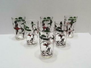 Vintage Tumbler Glasses Hunting Dogs And Ducks Set Of 6