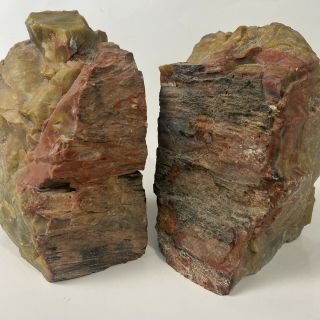 Petrified Wood Bookends Two Sides Polished Red Brown Natural Fossil Vintage Mr