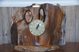 One Of A Kind Vintage Electric Clock Mounted In Petrified Wood